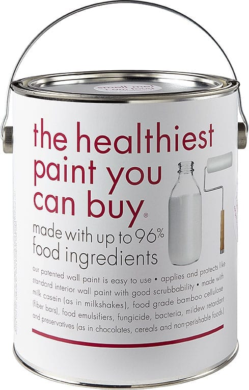 anna sova - food paint - can front photo